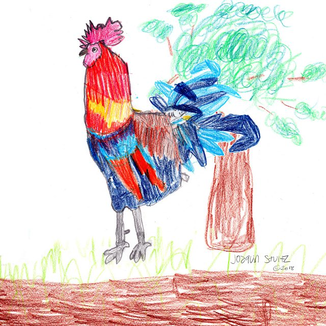 Drawing of a rooster as a gift to his favorite restaurant