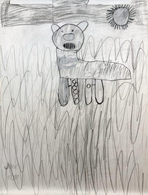 Kangaroo (Jun 5)