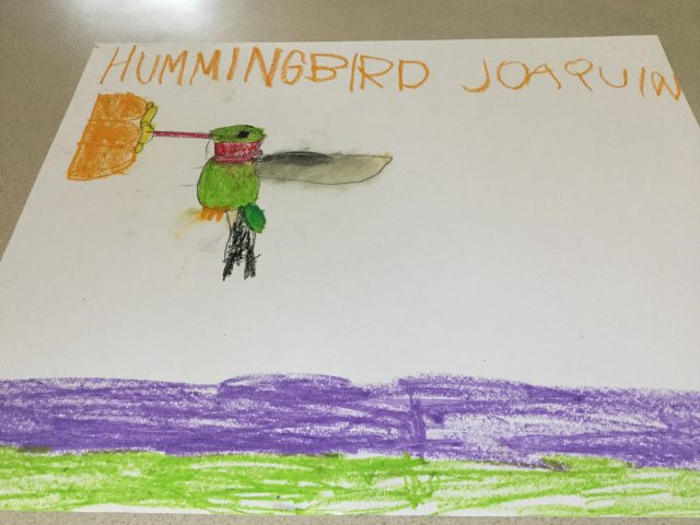 This is a Pastel Hummingbird made bu Joaquin Stultz
