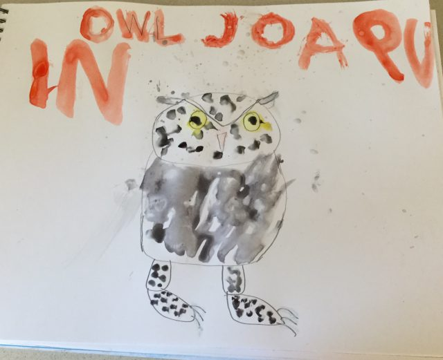 Joaquin's Watercolor Gray Owl