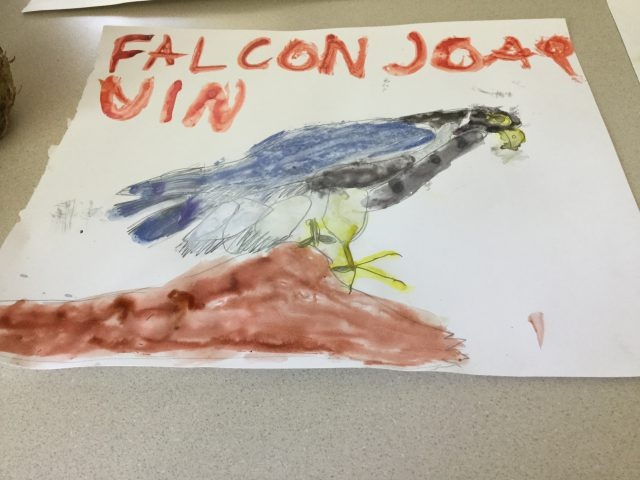This is a Watercolor Falcon using the techniches regular, and tap