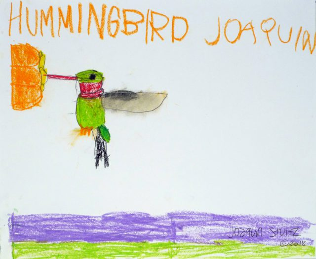 Hummingbird in crayons (7/25)